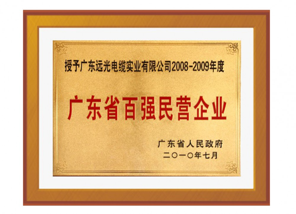 Top 100 Private Enterprises of Guangdong